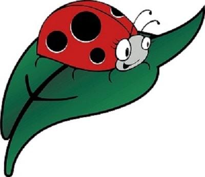 Ladybirds Pre-School